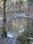 Frozen pond along the way