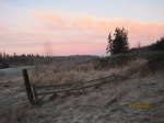 Old wood fence and pink sky