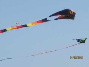 Two kites at Squalicum harbor