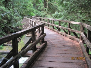 One of the more complex bridges on this trail