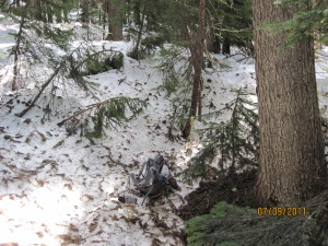 Snow on trail