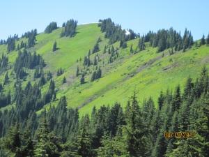 Excelsior Ridge