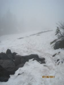 Mist & snow on upper trail