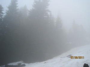 Fog & snow on upper trail