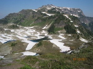 Tarns below Yellow Aster Butte